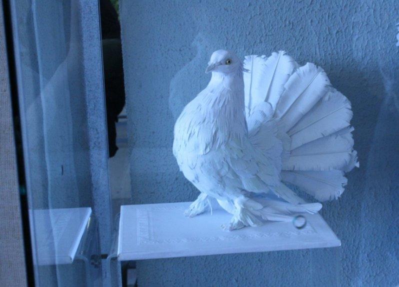 Бумажный голубь Олега Ирискина